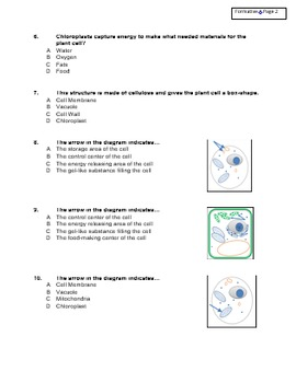 Science Formative and Summative Assessments: Cell Organelles Grades 3-5