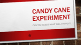 Science Fun:  Candy Cane Experiment