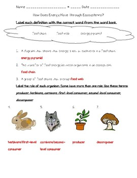 Science Fusion 5th G Unit 6 Lesson 2 - How Does Energy Move Through Ecosystems?