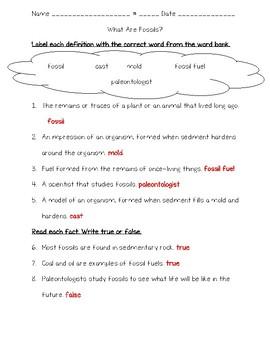 Science Fusion 5th Grade Unit 10 Quizzes - Fossils