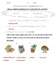 Science Fusion 5th Grade Unit 6 Quizzes - Energy and Ecosystems