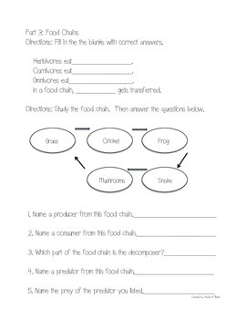 Science Fusion Grade 3 Unit 4 Study Guide and Test with Answer Keys