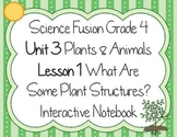 Science Fusion - Grade 4 - What Are Some Plant Structures? Interactive Notebook