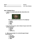 Science Fusion Unit 3, Lessons 4-6 Test. 4th Grade