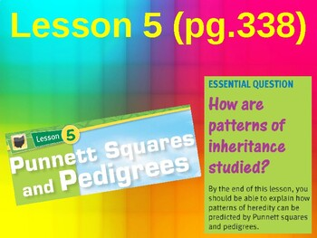 Science Fusion Unit 5, Lesson 5 Punnett Squares & Pedigrees notes