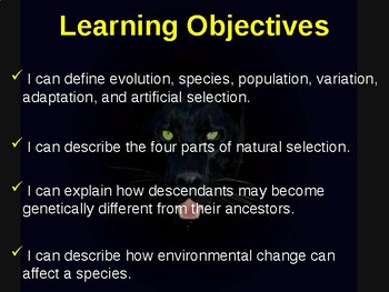 Science Fusion Unit 6, Lesson 1 Theory of Evolution by Natural Selection notes