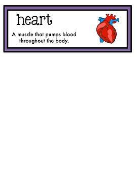 Science Fusion Vocabulary Cards Second Grade Unit 8