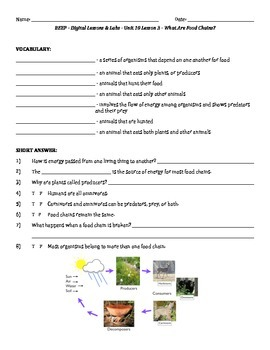 Science Fusion - worksheets for unit 10 digital lesson grade 4
