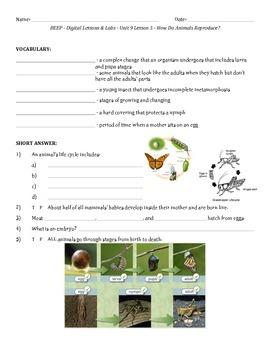 science a closer look grade 2 pdf download
