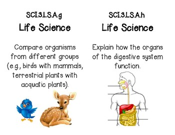 Science GLE Standard Cards