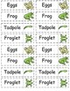 Science Grade 2 All  Life cycles frog butterfly plant Bundle