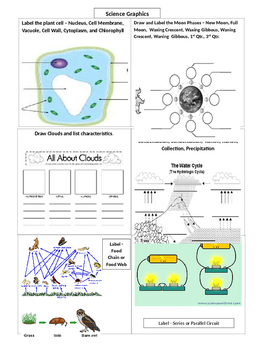 Science Graphic Worksheet - Moon Phases, Cells, Clouds, Water Cycle, Electricity