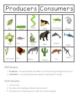 Science: Habitats- Producers and Consumers
