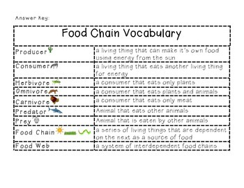 science habitats and communities food chain vocabulary puzzle. Black Bedroom Furniture Sets. Home Design Ideas