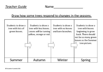 Science - How Trees Respond to the Seasons - Kindergarten and Stage 1