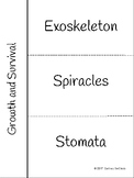 Growth and Survival Science INB Vocabulary