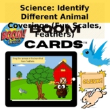 Science: Identify Animals by Covering (Fur, Scale, and Feathers) SKL2a