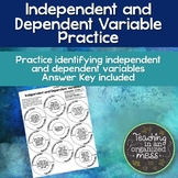 Science Independent and Dependent Variables Practice