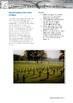 Science Information and Worksheet - Chemical Weapons of World War 1