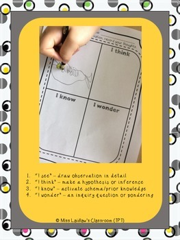 Science Inquiry Observation Sheets for Students