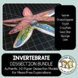 Dissection - Invertebrate Animals Bundle