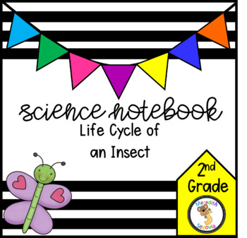 Life Cycle of an Insect (2nd Grade Notebook)
