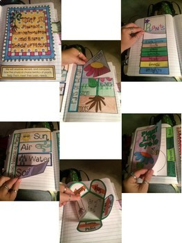 Science Interactive Notebook- Physical Characteristics and Basic Needs of Plants