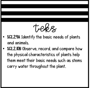 Physical Characteristics and Basic Needs of Plants (2nd Grade Notebook)