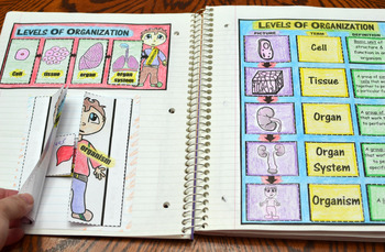 Science Interactive Notebook on Cells