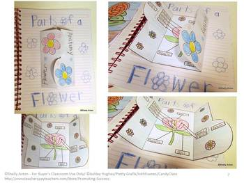 Science BUNDLE of Interactive Notebooks