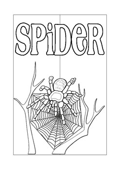 Science Interactive Spider Lapbook