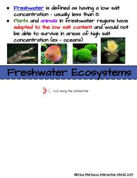 Science Interactive World - Aquatic Ecosystems Interactive Flip Book and Quiz