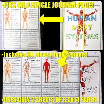 Science Journal: Human Body Systems Research Activity