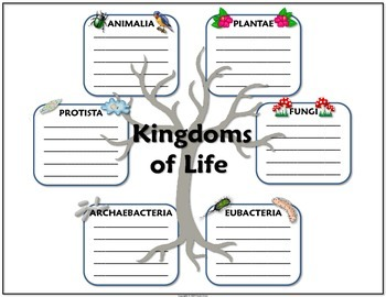 science journal taxonomy and kingdoms of life by travis terry tpt. Black Bedroom Furniture Sets. Home Design Ideas
