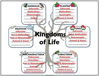 Science Journal Taxonomy And Kingdoms Of Life