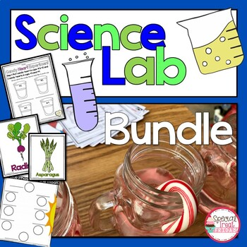 Oobleck And The Scientific Method Worksheets Teaching