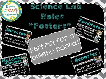Science Lab Role Posters