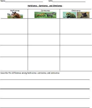 Science Lesson: Herbivore, Carnivore, Omnivore