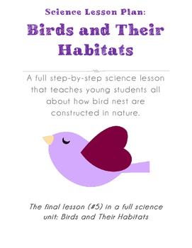 Science Lesson Plan - Let's Build a Nest!