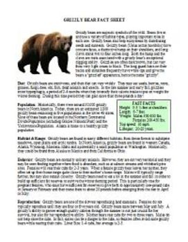 Science Lesson Plans - Bears