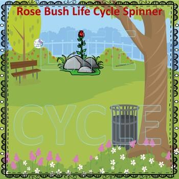 Science Life Cycle Spinner Bundle #2
