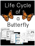 Science- Life Cycle of a Butterfly