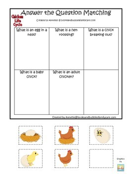 Science Life Cycle of a Chicken Answer the Question preschool homeschool game.
