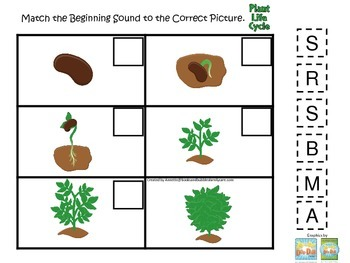Science Life Cycle of a Plant Beginning Sounds preschool homeschool game.