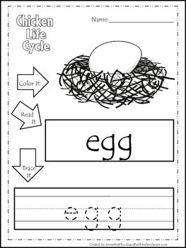 Science Life Cycle of a Chicken Color,Read,Trace preschool homeschool worksheets