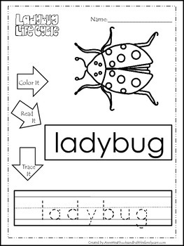 Science Life Cycle of a Ladybug Color, Read, Trace preschool homeschool workshee