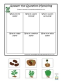 Science Life Cycle of a Plant Answer the Question preschool homeschool game.