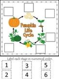 Science Life Cycle of a Pumpkin Numerical Order preschool homeschool game.