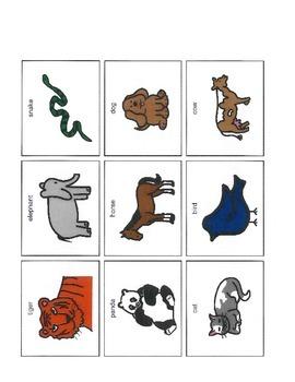 Science: Matching Animals