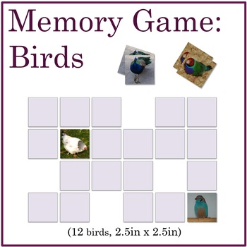 Science Memory Game: Birds with Vibrant Color Photographs